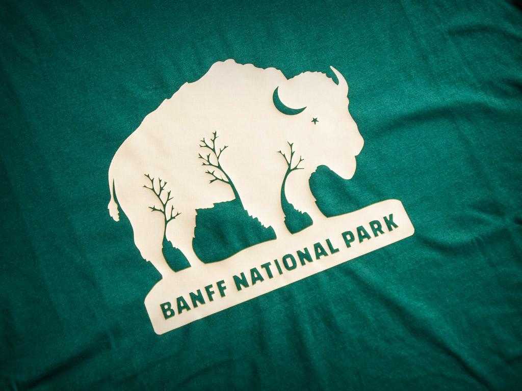 T shirt design queenstown - Bison Belong Tshirt