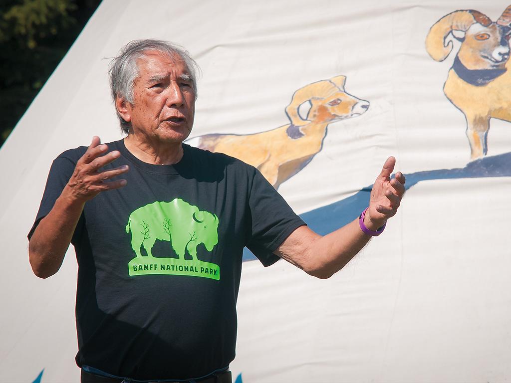 T shirt design queenstown - Bison Belong T Shirt First Nations