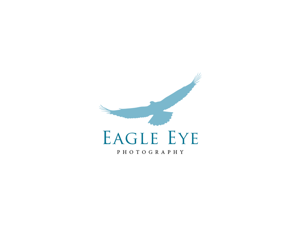 Eagle Eye Photography Logo